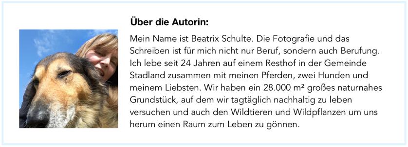 Autorinnenprofil Beatrix Schulte