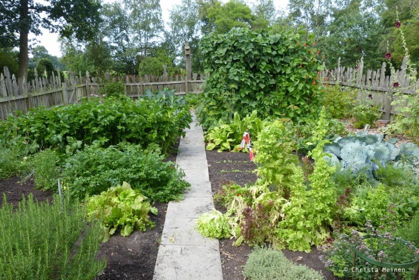 Bild 2 Der Gemüsegarten