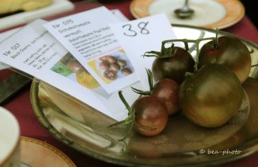 Tomatenverkostung bei Renate Düring, VEN.