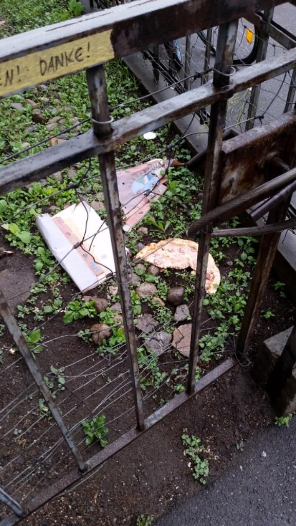weggeworfene Pizza im Garten