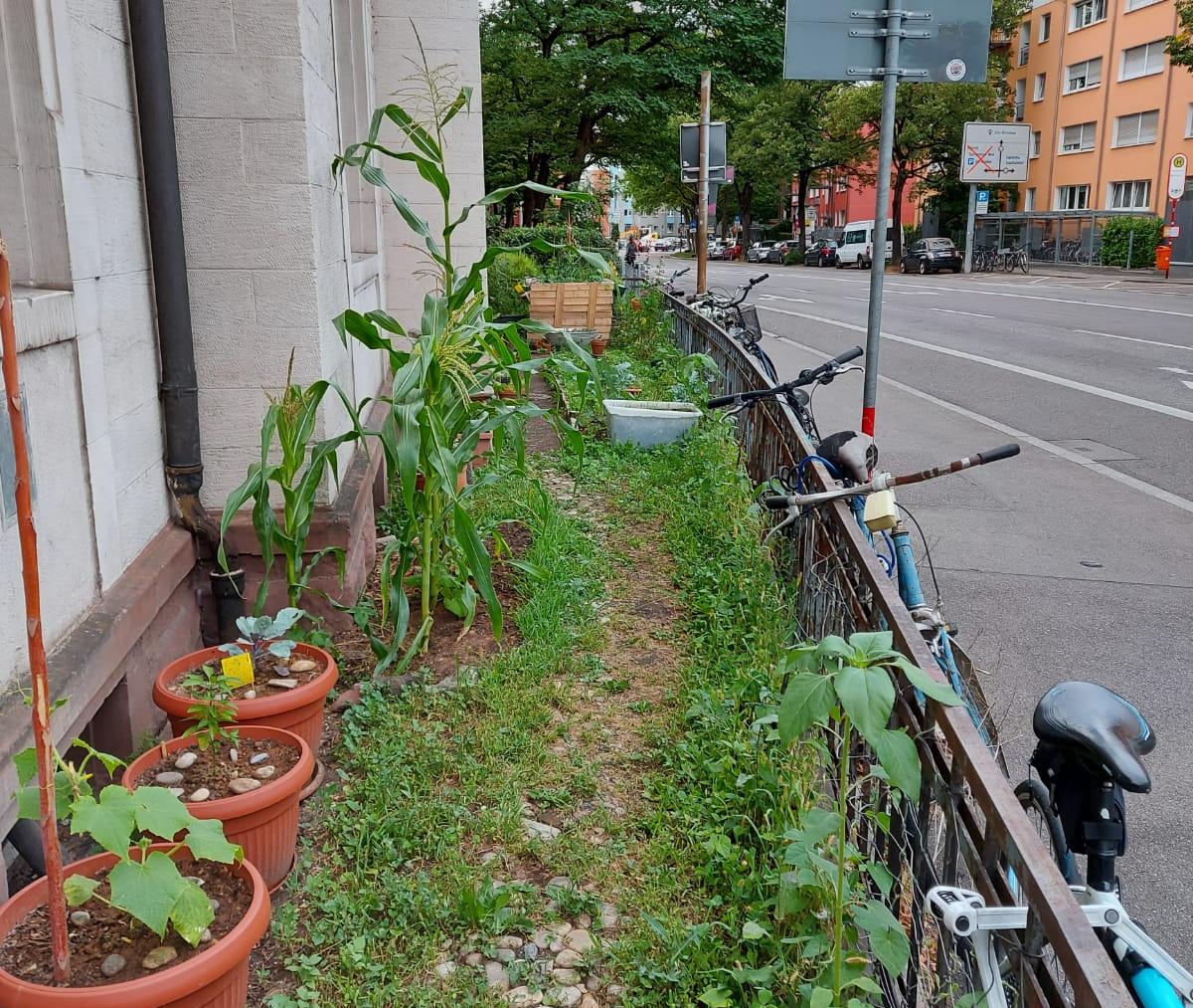 Stadt – Land – Garten Teil3