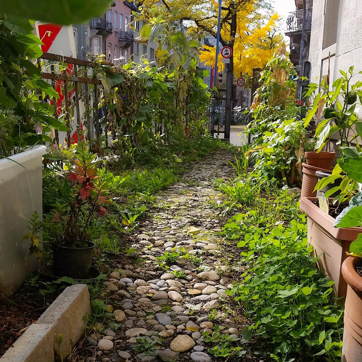 Stadt – Land – Garten 4 – DasFinale